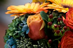 BloomersFloral Oct  1013